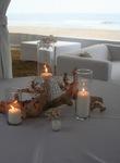 furniture, rentals, decor, beach theme, southern california